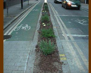 guerrilla_gardening_after.jpg