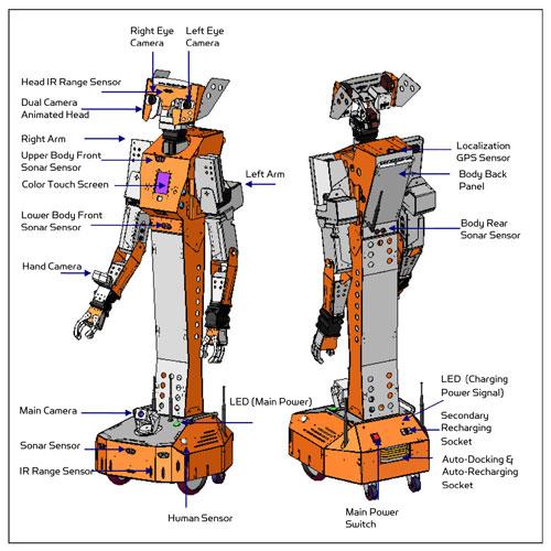 hawkRobot.jpg