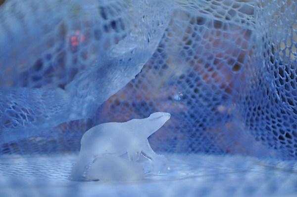 ijsbear.jpg