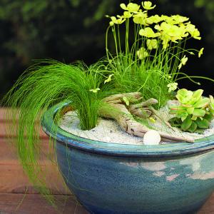 Beach-Garden-Pot-M