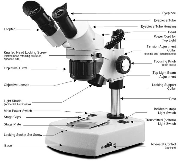 stereo-microscope-parts.jpg