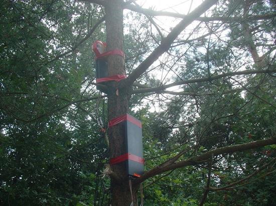 800Px-Har2009-Bs11-Antennas