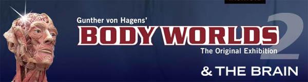 bodyWorlds2.jpg
