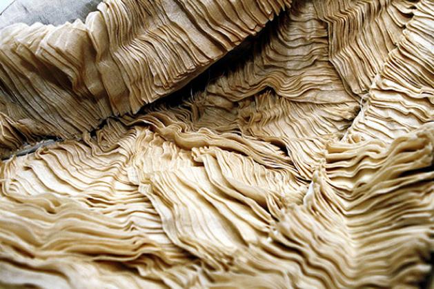 Ecofashion 5 Experimental Fabrics