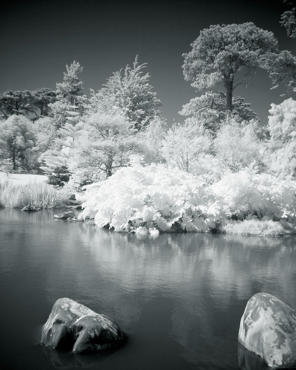 flashback-infrared-golden-gate-lake.jpg