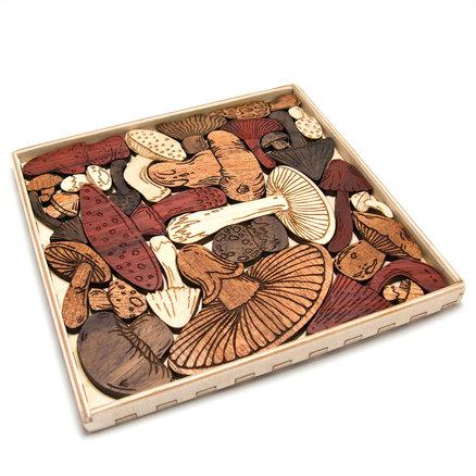 mysterious_mushroom_puzzle.jpg