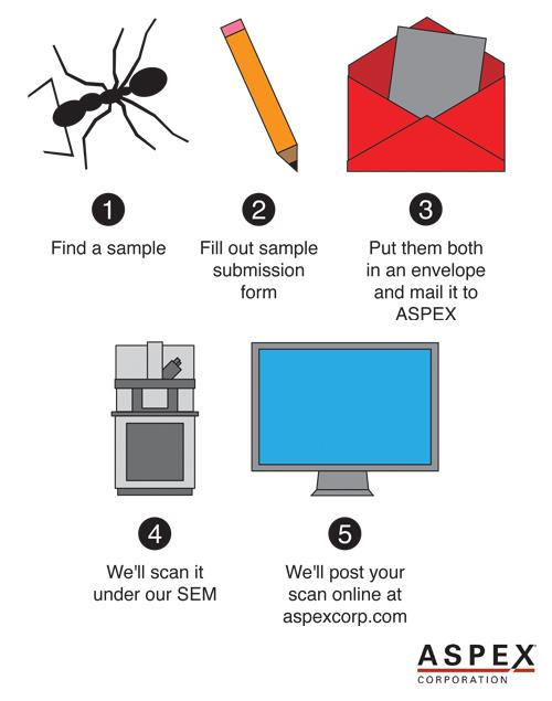 send-us-your-sample.jpg