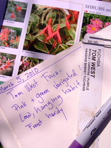 gardenplanning_7.jpg