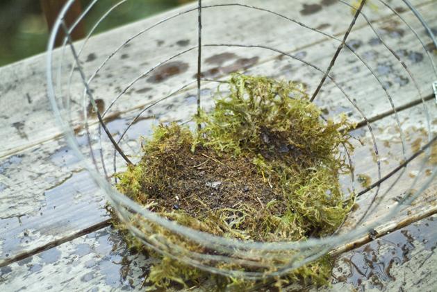 hanging_planter_0003.jpg