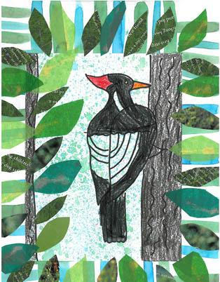 woodpecker314v.jpg