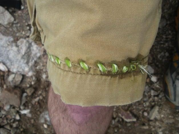 shorts_sewn_with_agave_fiber.jpg