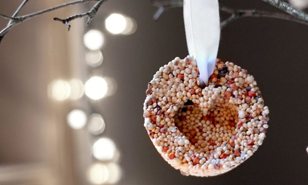 bird_seed_ornaments.jpg