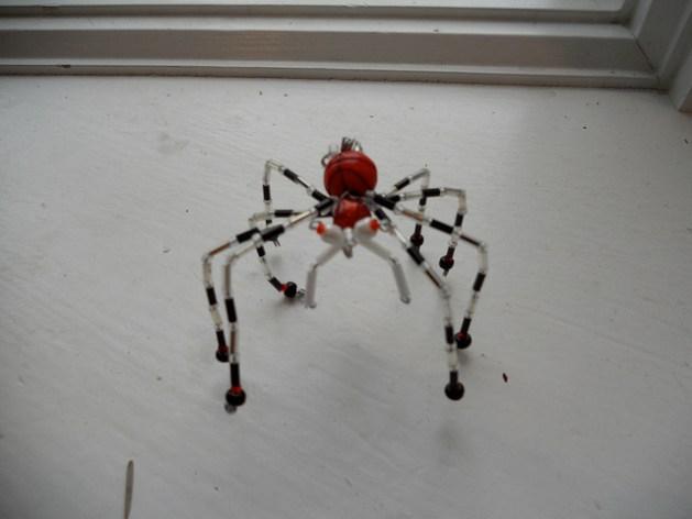 ukrainian_spider.jpg