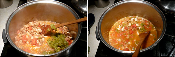 green-chili-stew.png
