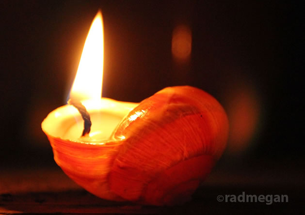 snail_shell_candle.jpg