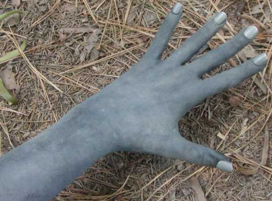weeping_angels_glove.jpg