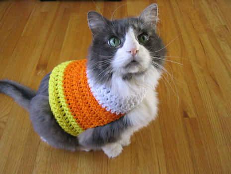 candy_corn_sweater.JPG