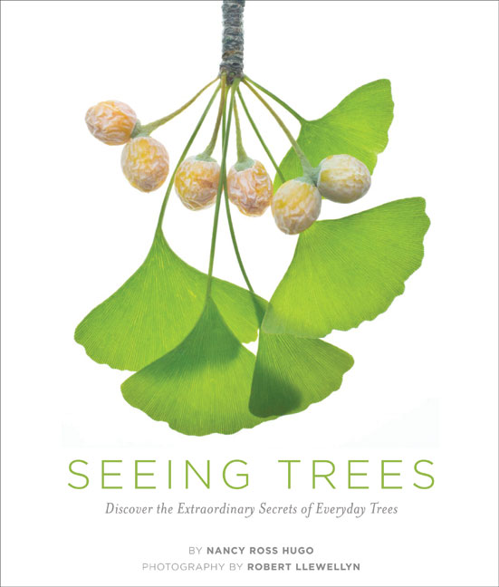 seeingtrees_cover.jpg