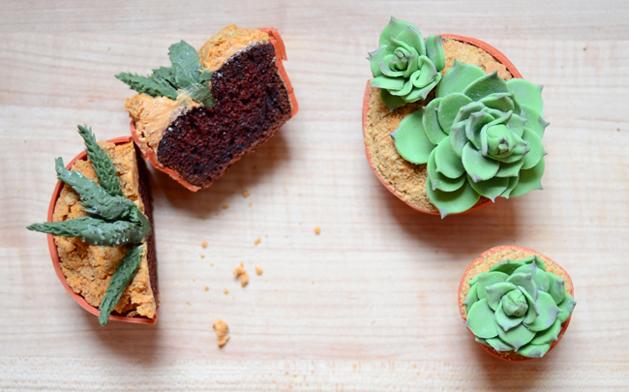 succulent cupcake.jpg