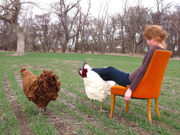 chicken_footstool.jpg