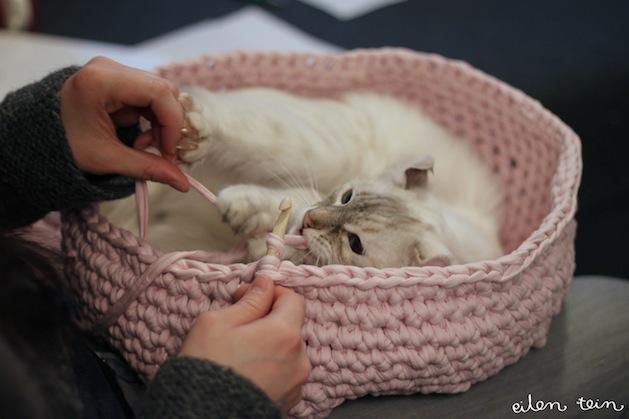 Mary Maxim - Free Cat Cave Pattern | 419x629