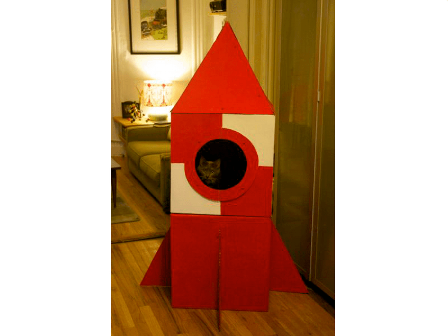carboard cat rocket