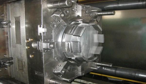 mold-600x346
