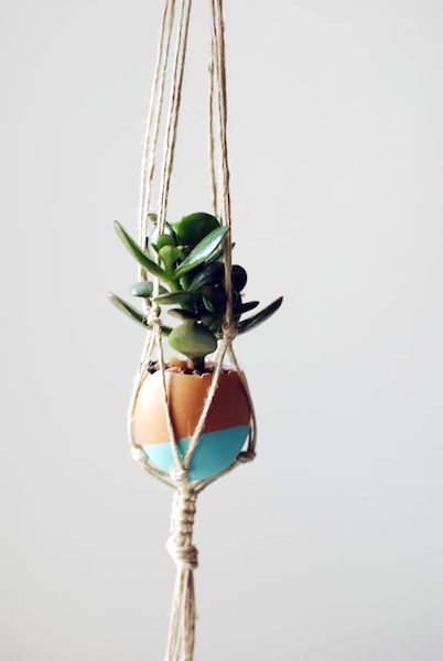 the-red-thread-succulent-egg-garden-single