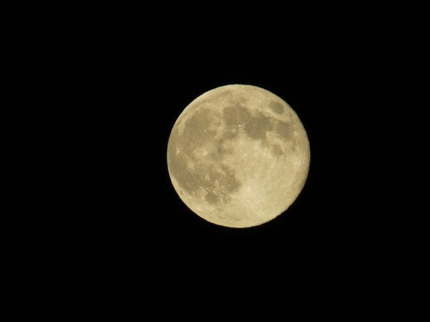Moon over Southern California (Photo credit: William Terranova)