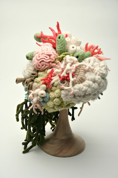01_coral_garden_hat_flickr_roundup