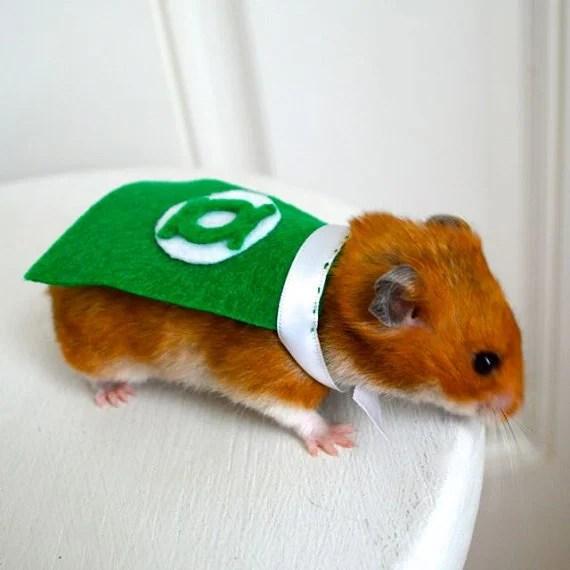 green-hamster1