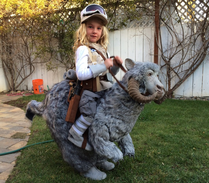 mini luke and tauntaun