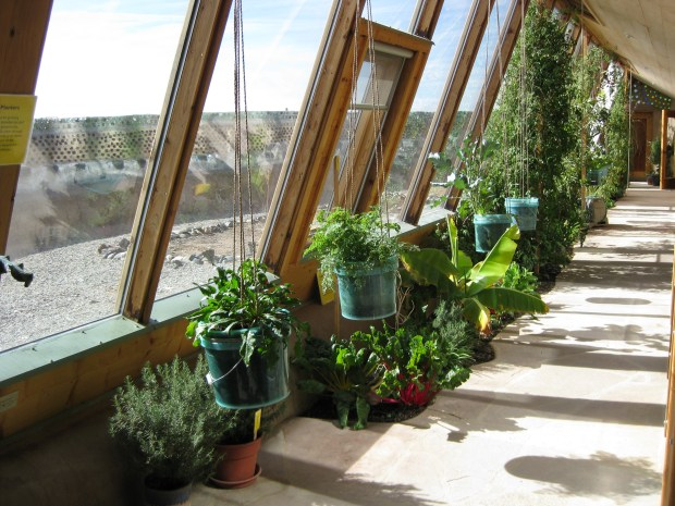 Earthship greenhouse. Photo: cc-by-sa-3.0, Amzi Smith