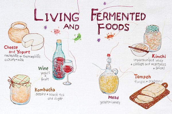 fermented_foods