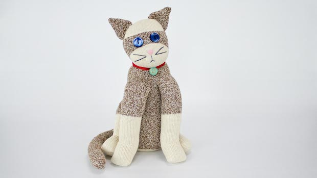 professorpincushion_sock_cat