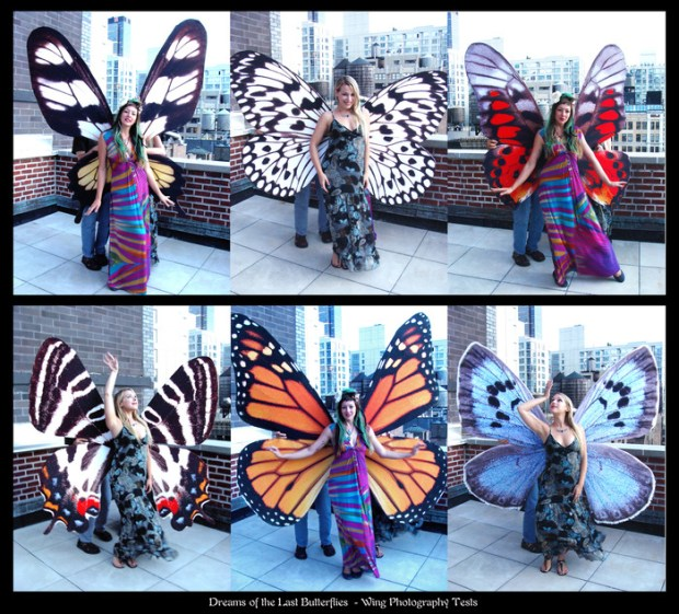 These butterfly costumes were actually created for a live-action tale by Zina Brown.