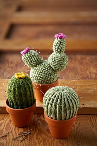 knitted cacti plants in pots on a wooden panel