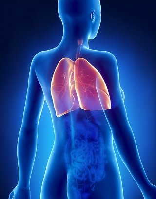 Image result for lung pain