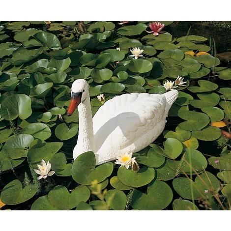 cygne blanc pour decoration de bassin de jardin