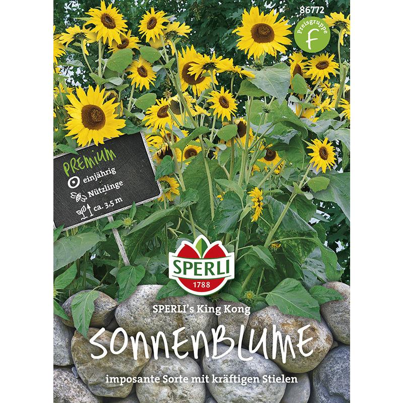 Sonnenblume King Kong 86772