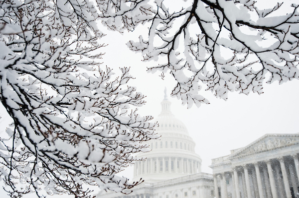 The Capitol is framed by snow covered branches on Wednesday. (Bill Clark/CQ Roll Call)