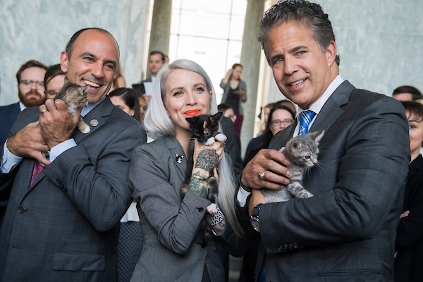 UNITED STATES - JUNE 7: Reps. Jimmy Panetta, D-Calif., left, Mike Bishop, R-Mich., and Hannah Shaw, an animal advocate known as