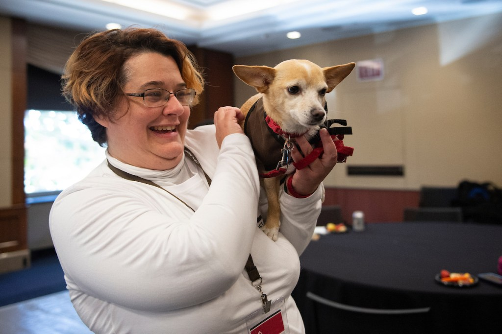 UNITED STATES - NOVEMBER 13: Chihuahua therapy dogs Lola visits Capitol Hill as part of an event run by Pet Partners, a therapy animal organization, and the Pet Industry Joint Advisory Council to help provide staffers stress relief on Wednesday Nov. 13, 2019. (Photo by Caroline Brehman/CQ Roll Call)