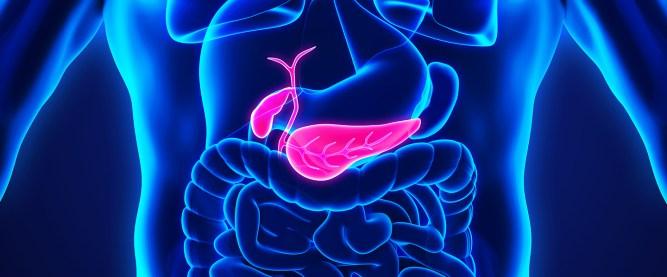 m5qdGzmJ - Treatment of gall bladder stones