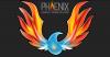 Australian Professional Skills Institute & Phoenix BTS
