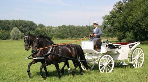 Hochzeitsauto Krefeld Oldtimer Kutsche Mieten Fur Ihre