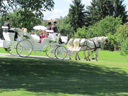 Bad Salzuflen Hochzeitskutsche Kollidiert Mit Bus Newsgo