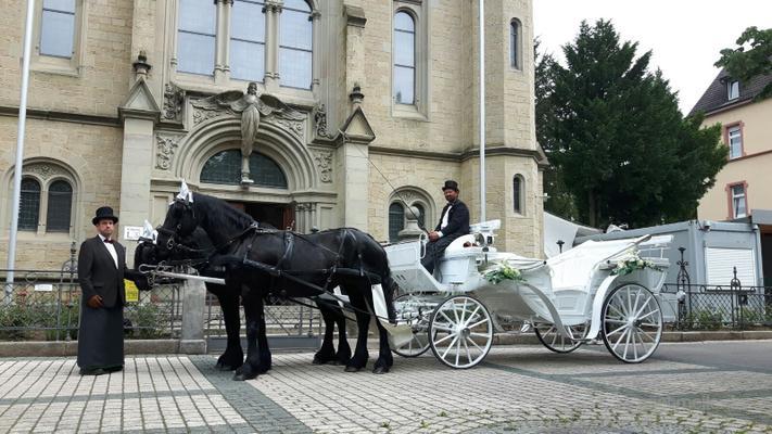 Hochzeitskutsche Pferdehof Lindhoff