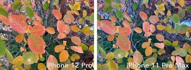 iphone 12 pro vs 11 pro max photo 2