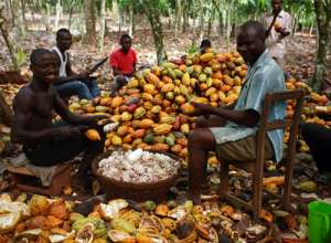 Cocoa Farmers To Receive Pensions From 2018